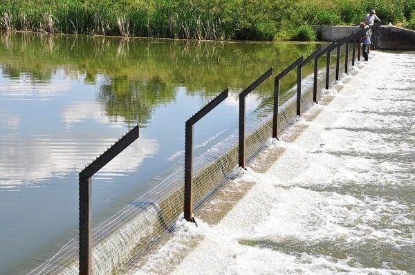 Lower Gar Lake fish fence