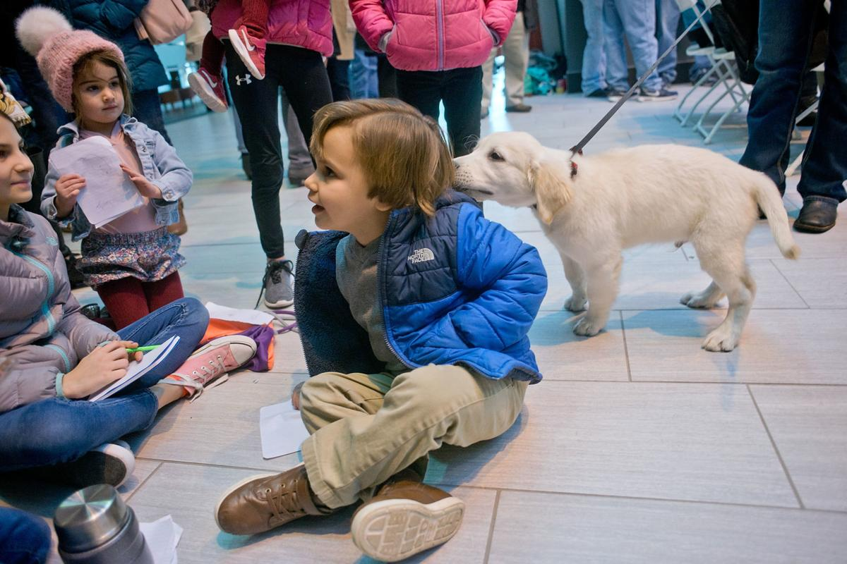 2018 Little Yellow Dog Auction