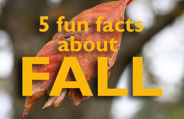 5 fun facts about fall | Coffee Break | siouxcityjournal com