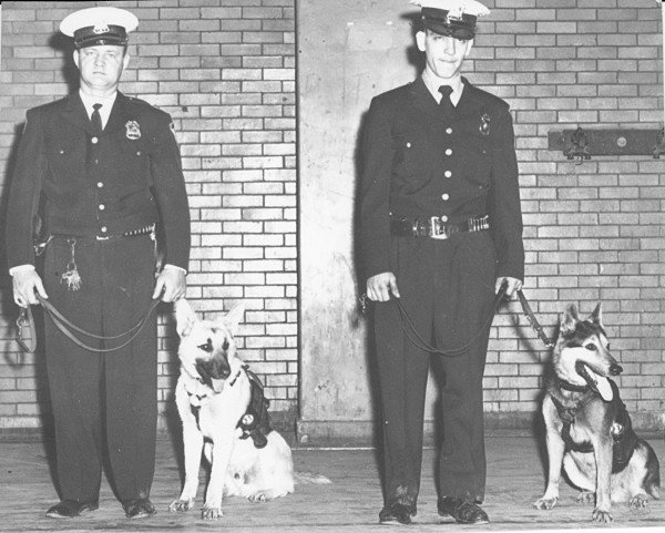Sioux City police dogs