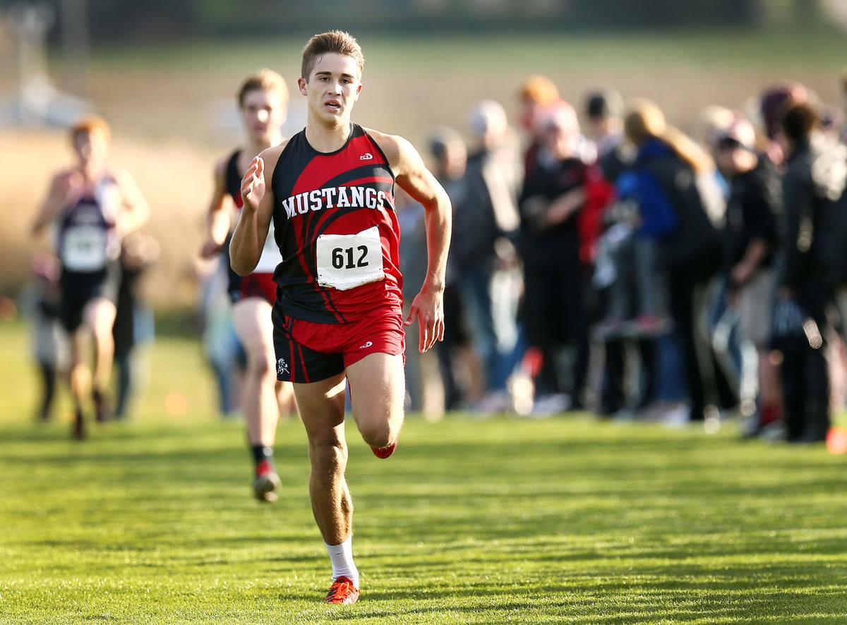 State Qualifying Cross Country Meet
