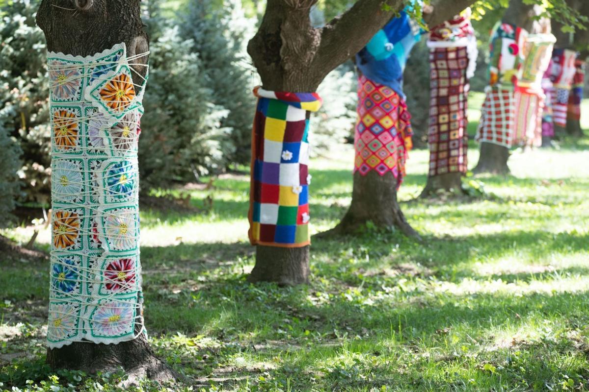 091221-owh-liv-treewraps-LS02
