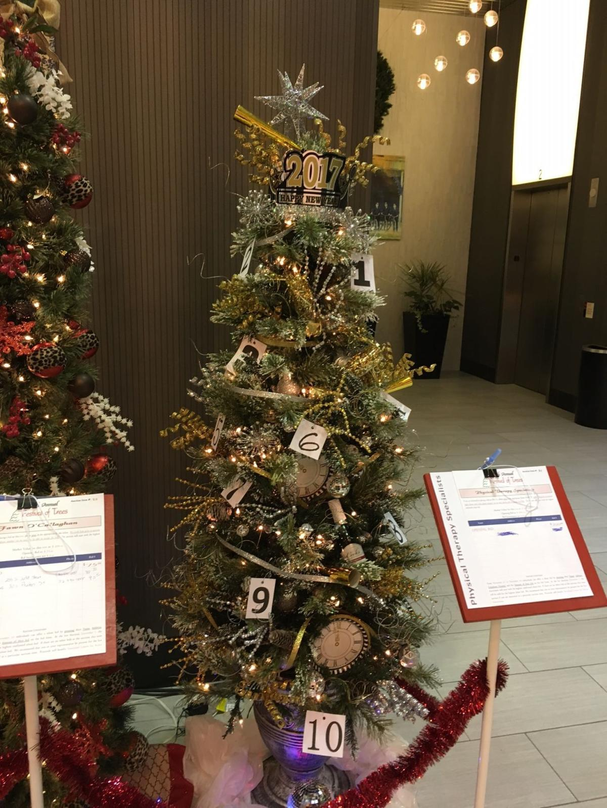 Photos: Award winners at the 2016 Festival of Trees | Local news ...
