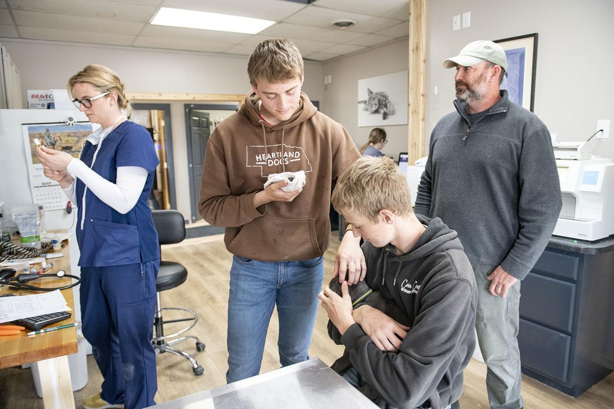 Cedar County Veterinary Services 1