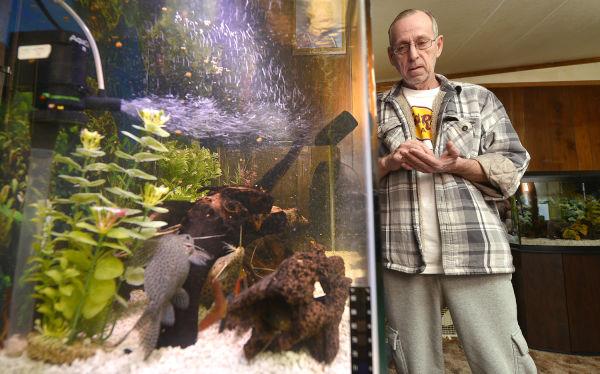 Aquarium keeper