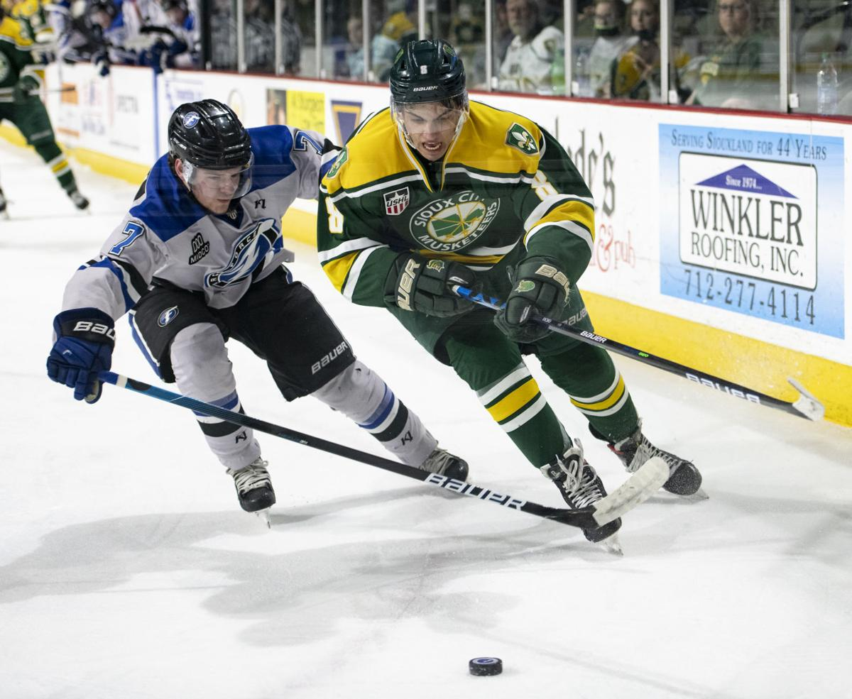 Musketeers vs Fargo Force hockey