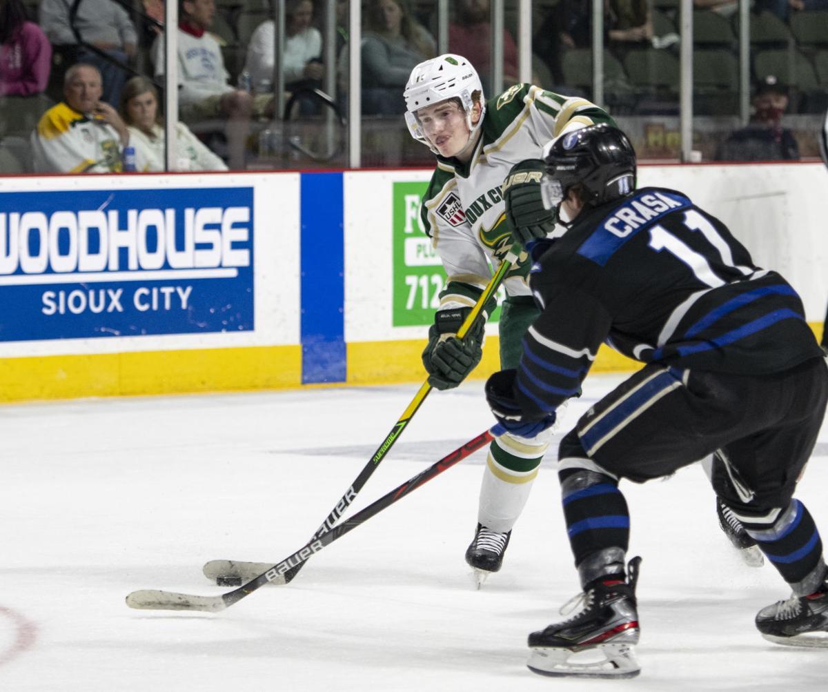 Musketeers vs Fargo Force hockey