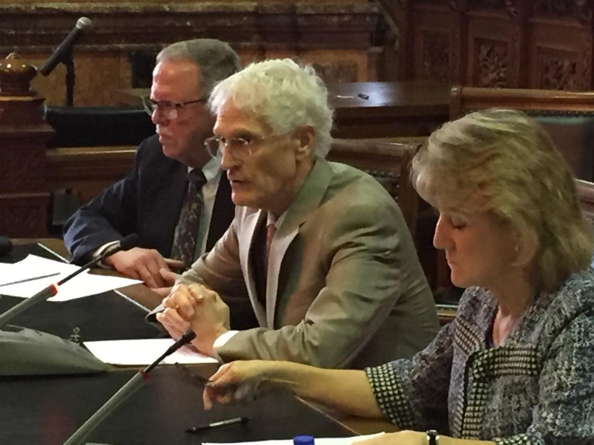revenue estimating committee