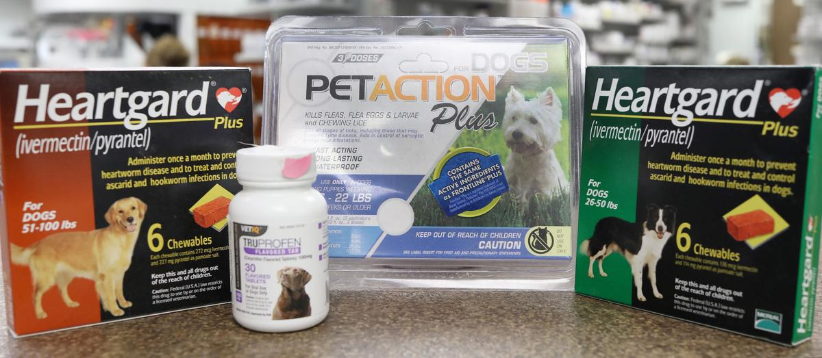 Going to the dogs: Local pharmacy opts to take a bite out of