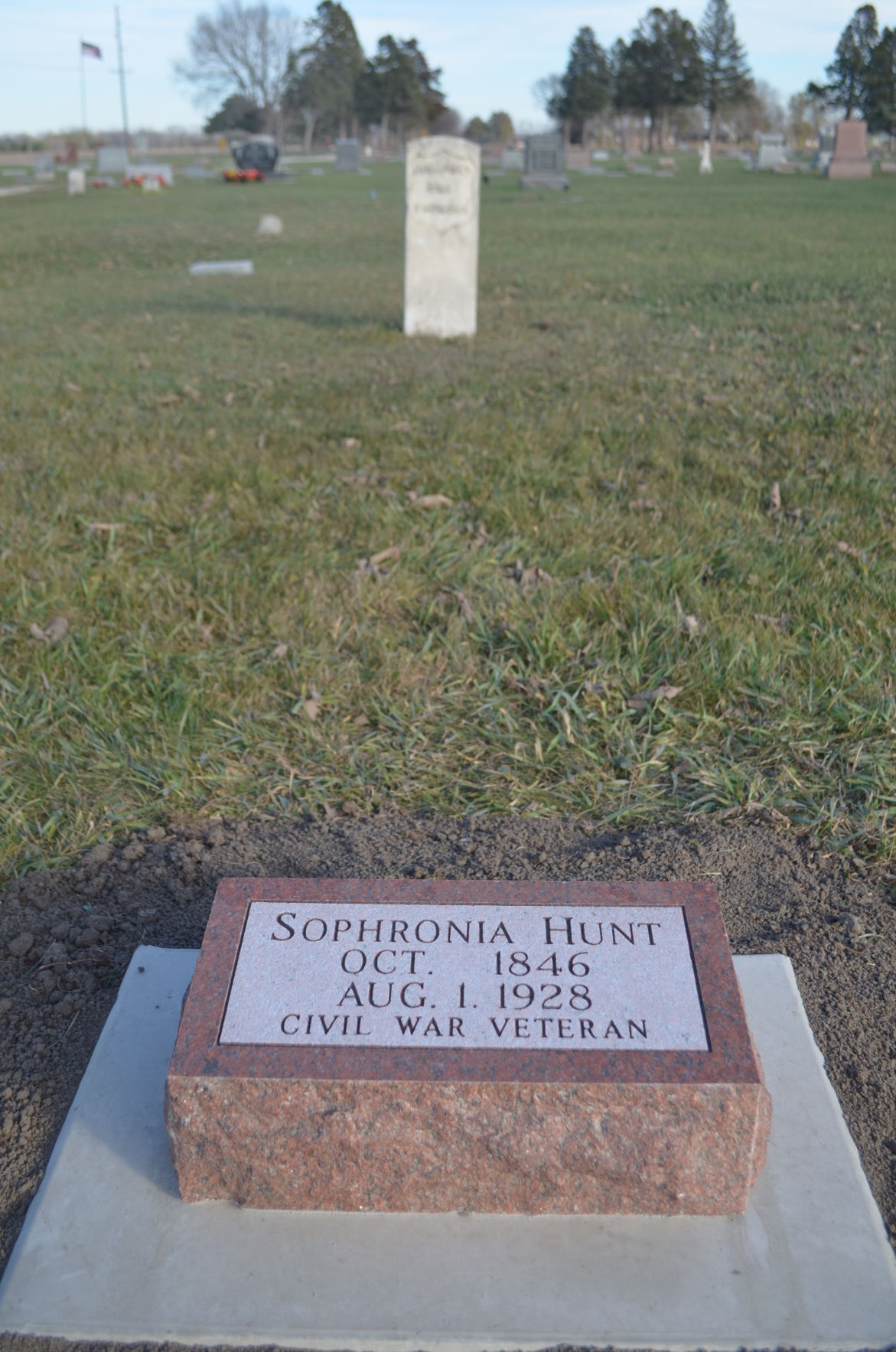 Sophronia Hunt
