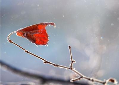 Council Bluffs ice photo