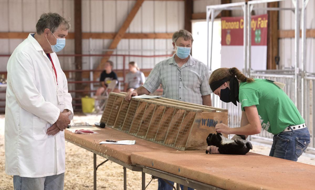 Covid-19 Monona County fair #1