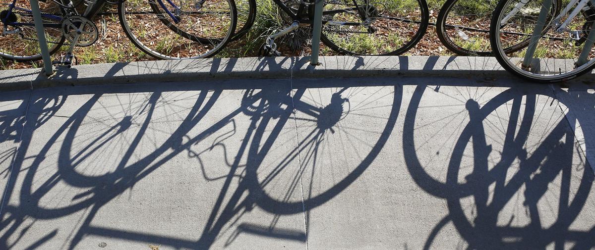 Bicycles stock