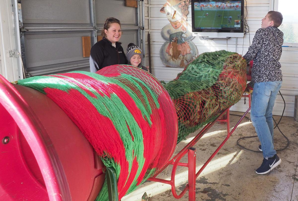 Christmas Tree Farms See Big Business On Black Friday