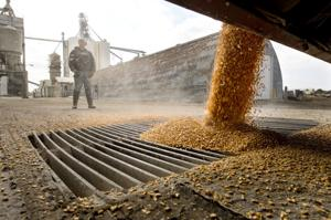 Deal reached to fix 'grain glitch' that favored co-ops over private elevators for tax purposes
