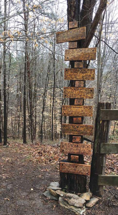 SML's ONE Forest School set to open