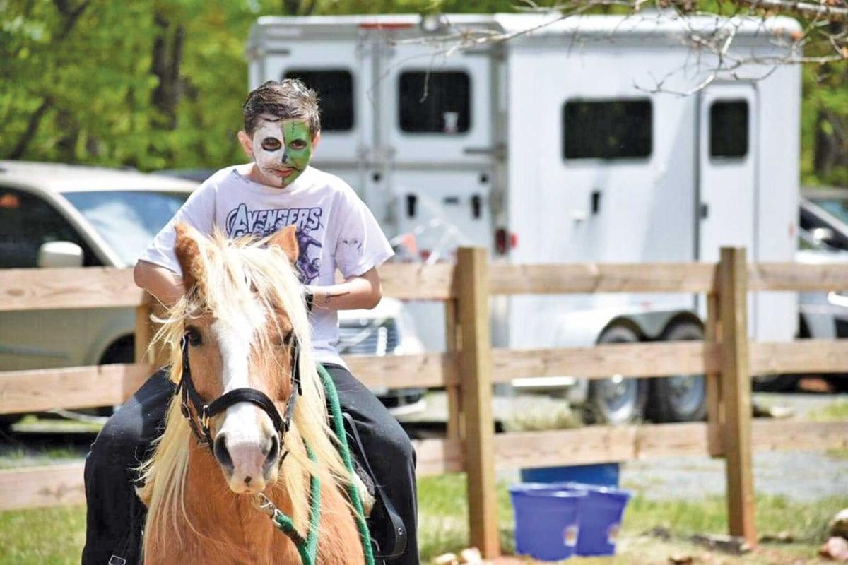 FOP Horse