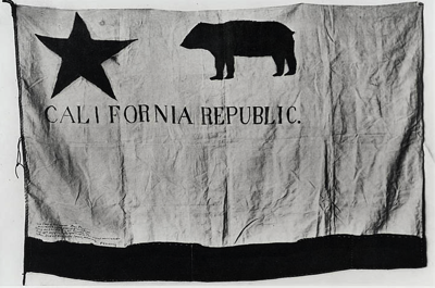 First State Bear Flag