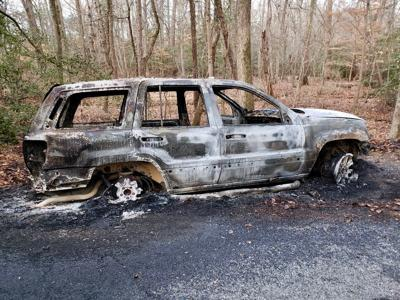 Vehicle fire believed intentional
