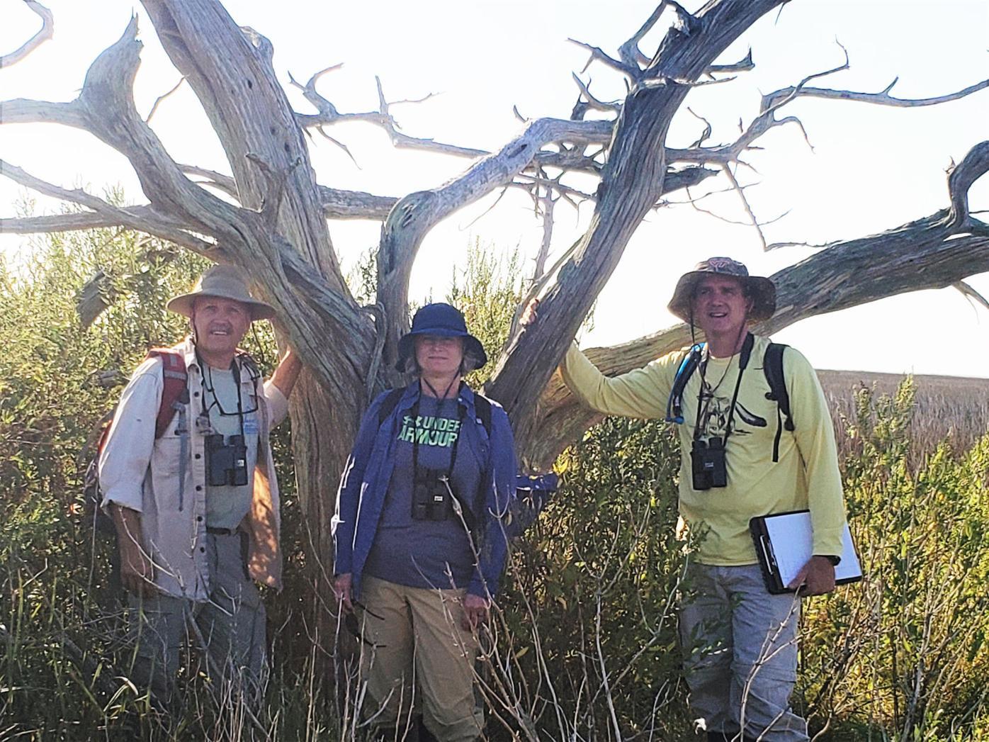 Environmental Division continues monitoring Bloodsworth, Adam islands
