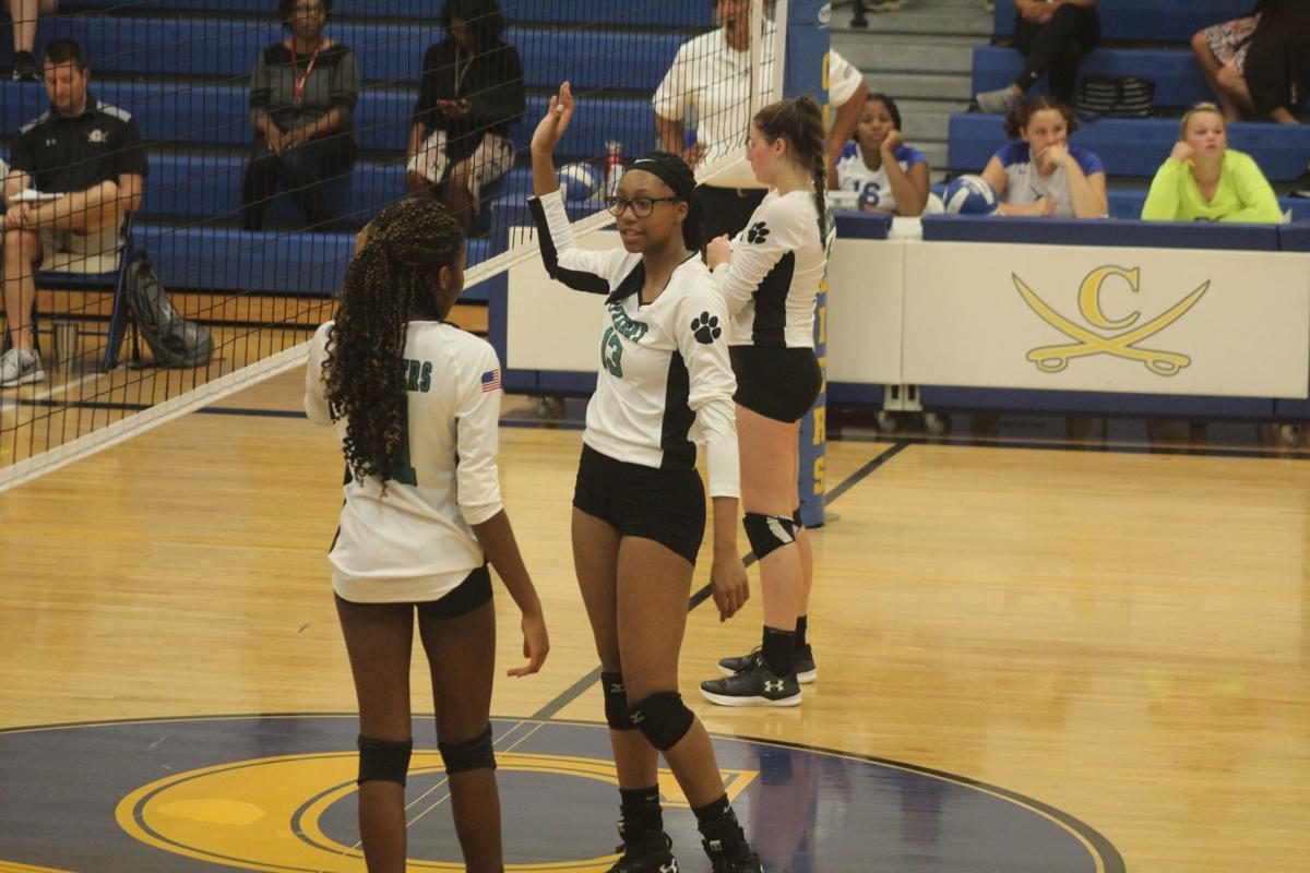 Jasmin Johnson (Patuxent volleyball)