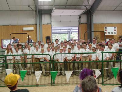 Large Group Livestock Members