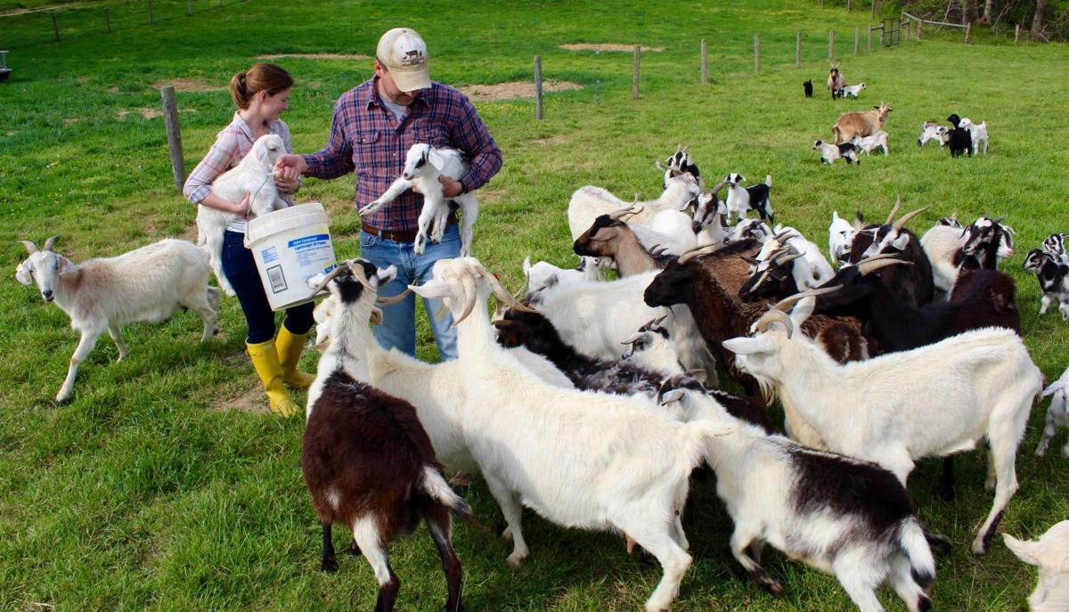 Monnet Farms