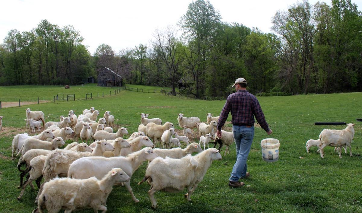 Monnett Farms