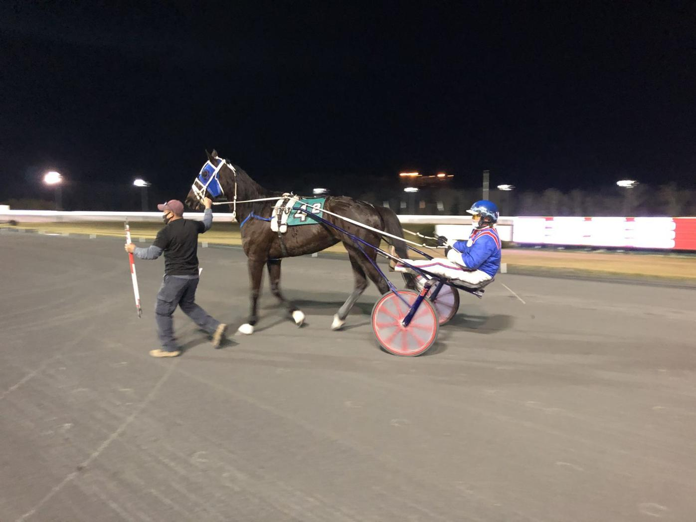 Pacing mares, trotters highlight Wednesday cards