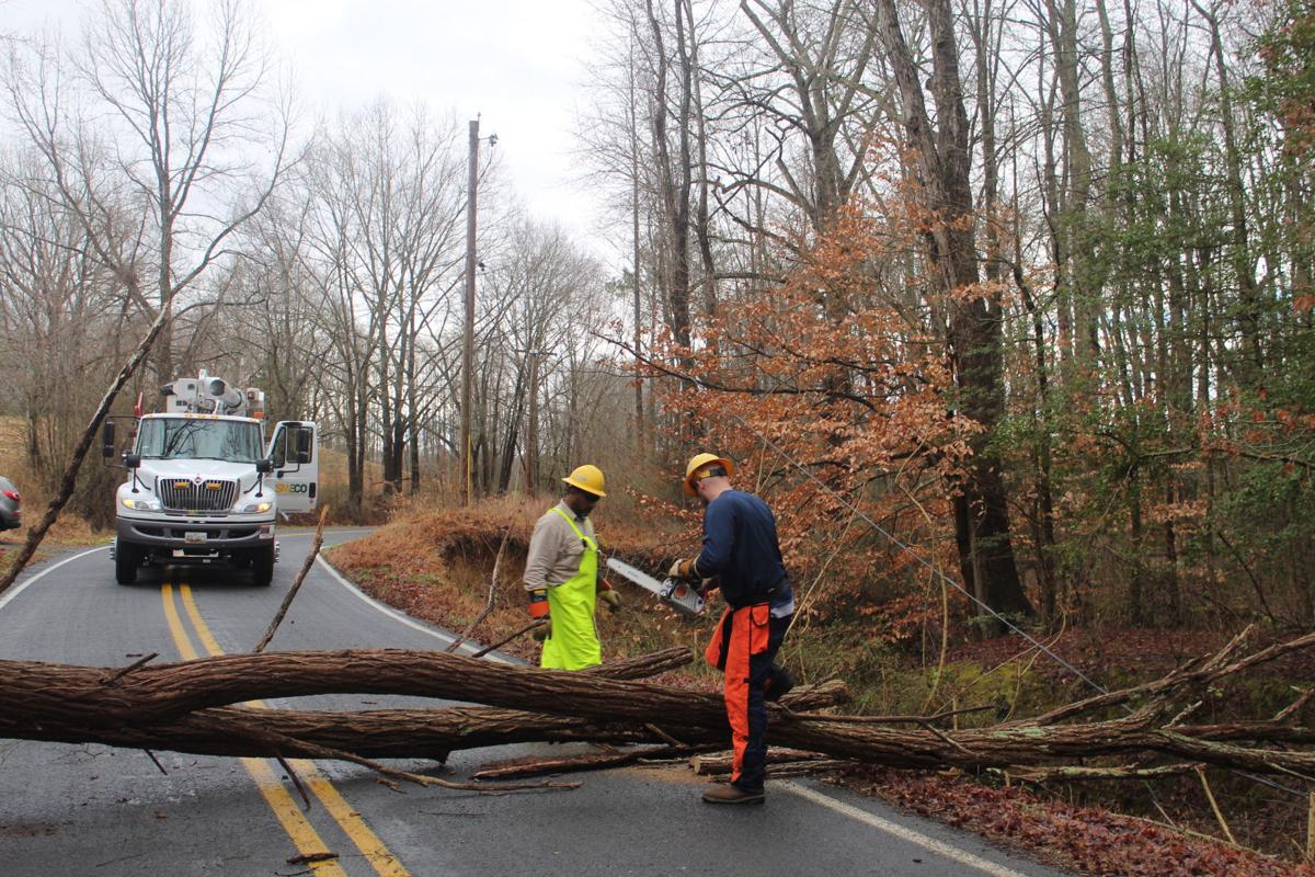 Tree downs power line in Allens Fresh