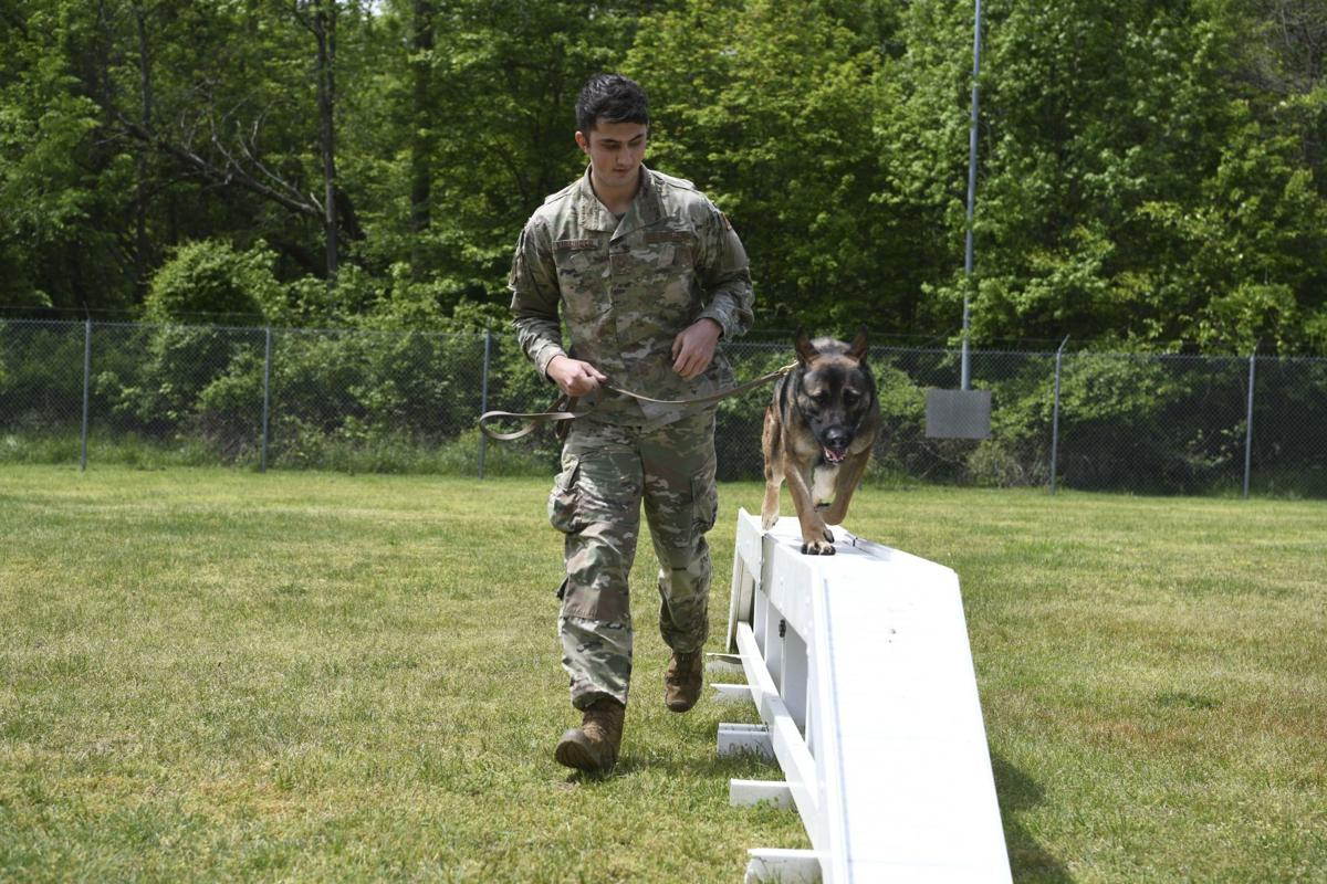 Andrews working dogs showcase abilities during Police Week