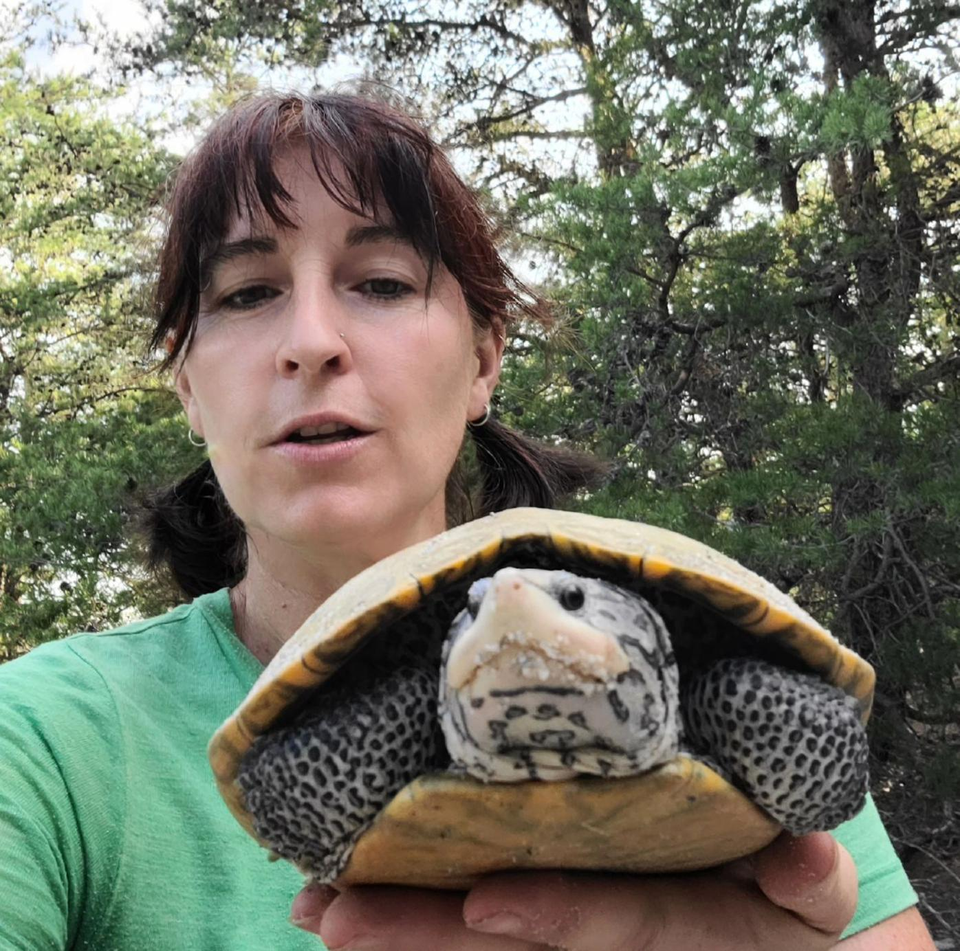 Studying Maryland's official state reptile on Pax River's beaches