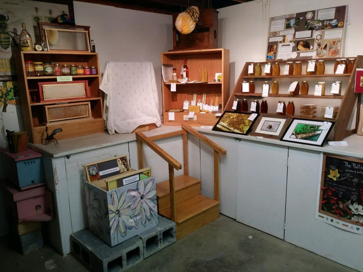 Fun facts, county fair requirements explained for honey and beeswax department