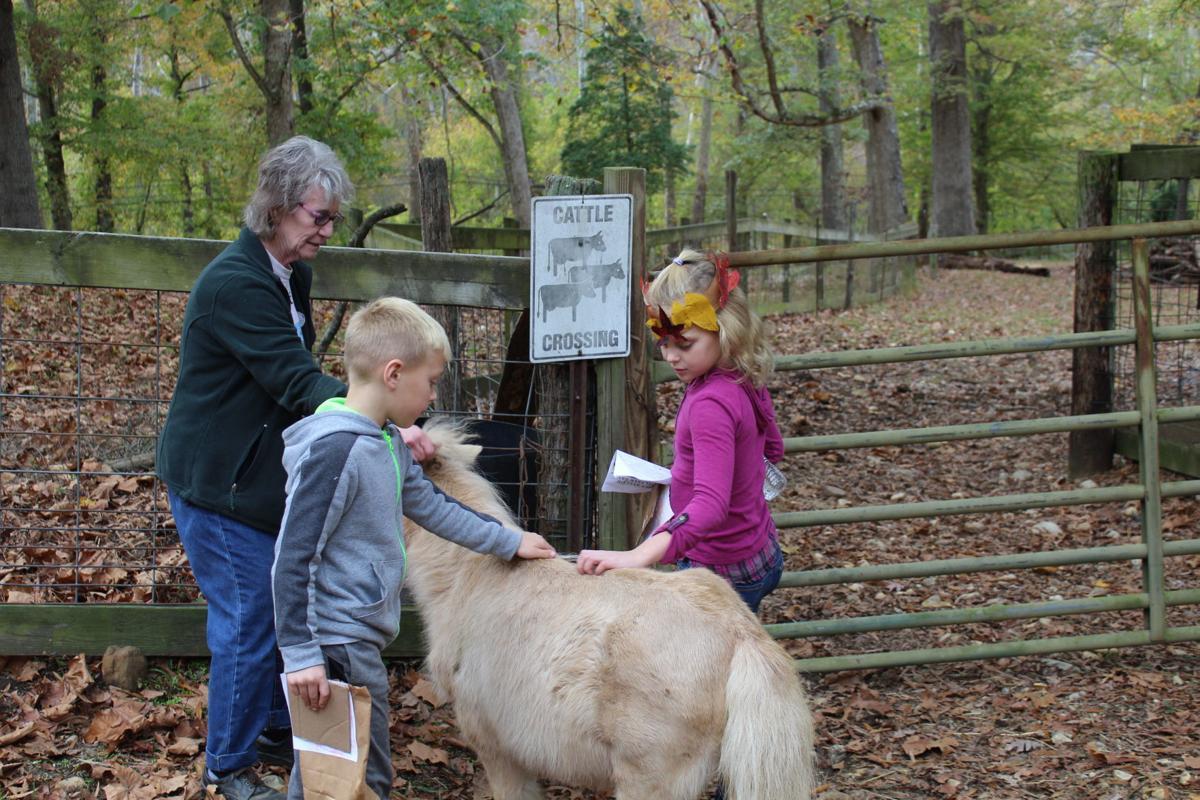 Fall Farm Day family fun at Ferguson Foundation