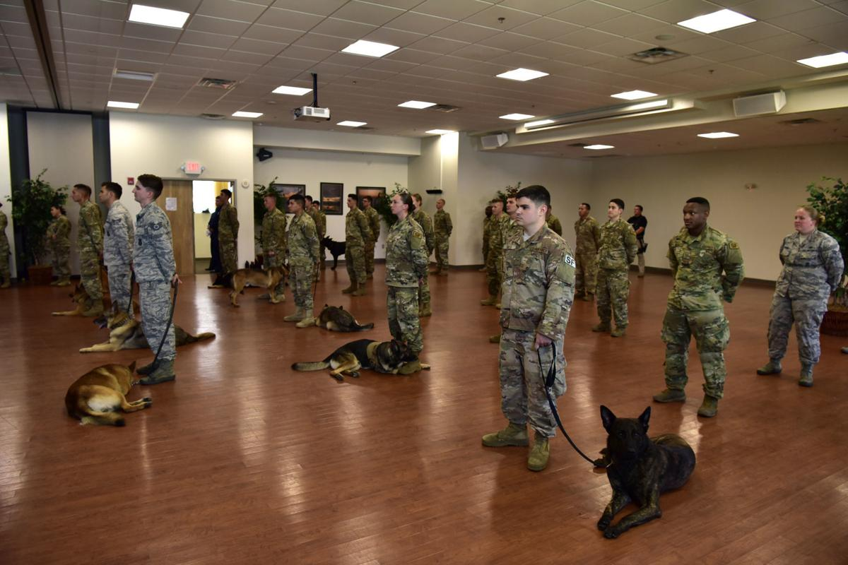 Services held for military working dog