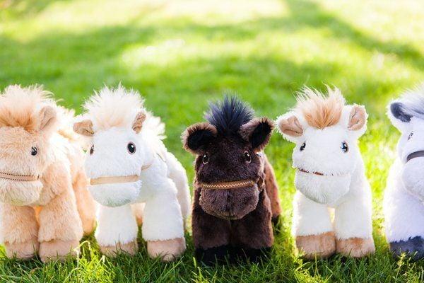 Somerset woman creates toy company to help kids learn language