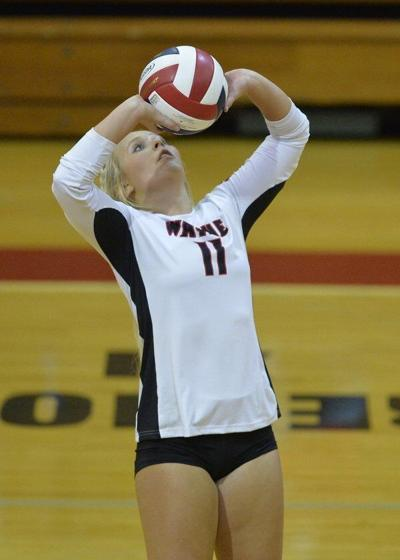 Wayne County downs Southwestern in volleyball
