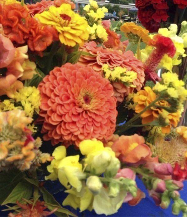 Bring in those freshly cut flowers