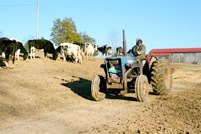 Winter Farming