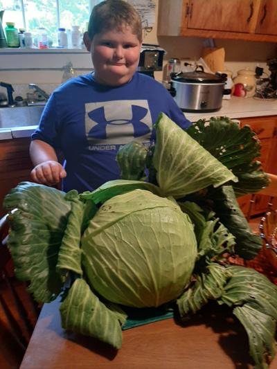 Evan Hensley with cabbage