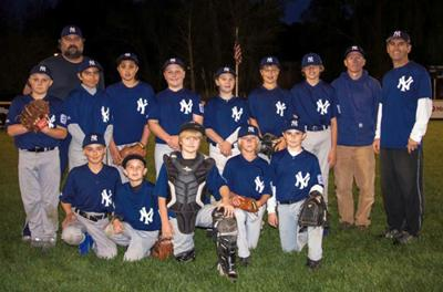 low priced 54cda d6415 SLL Major Yankees crowned Division champions | Sports ...