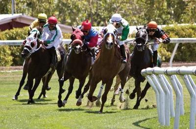 Wine Country racing