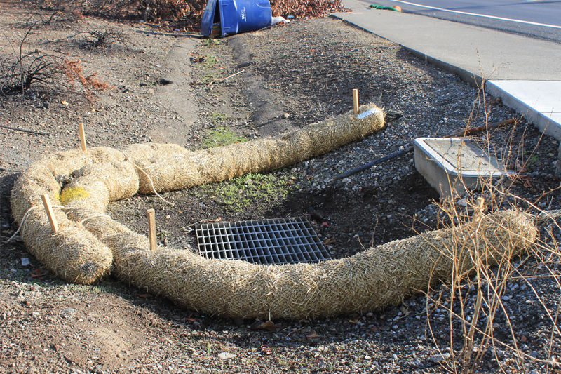 protecting storm drains