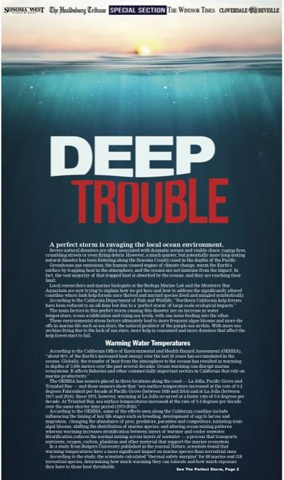 Deep trouble cover