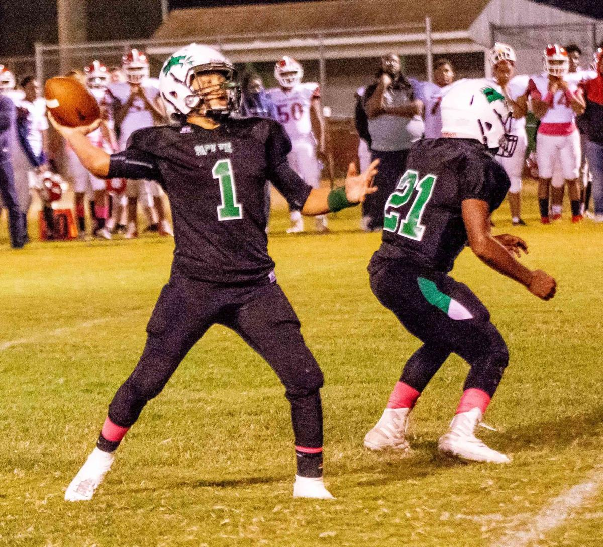 Park View HS quarterback Josh Boyd passed for 135 yards and two touchdowns and rushed for 132 yards and a score in the Dragons' 34-29 loss to Sussex-Central HS on Friday night. (Dennis Smith)