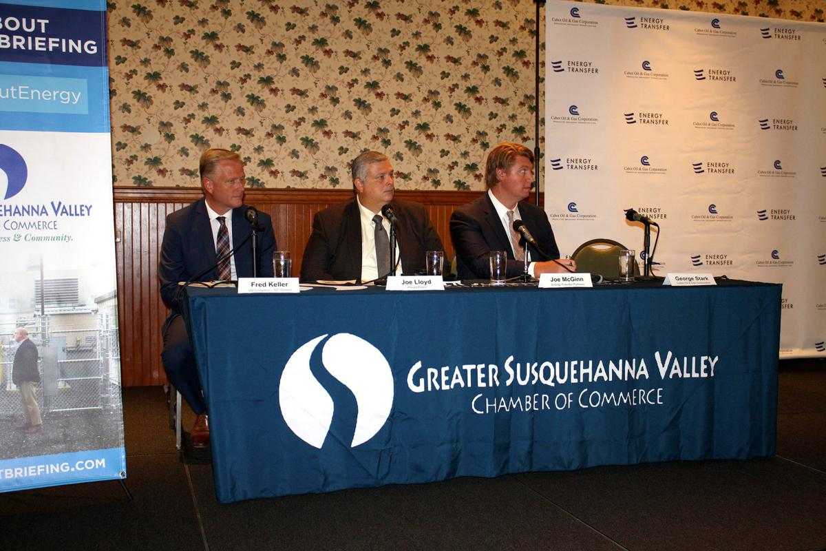 Energy talk panel supports natural gas