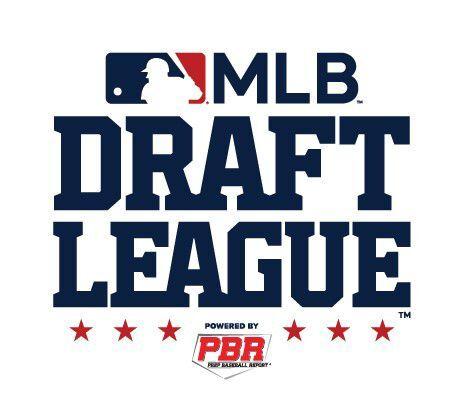Williamsport will be part of new MLB Draft League   Local News    standard-journal.com
