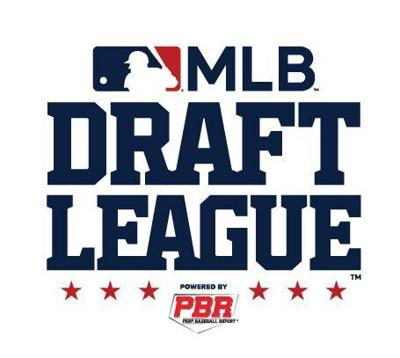 Williamsport will be part of new MLB Draft League | Local News |  standard-journal.com