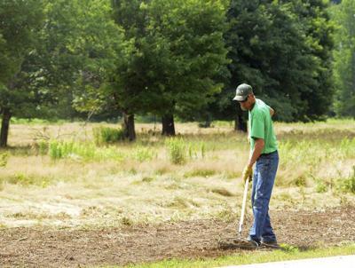 Work begins making golfcourse a park