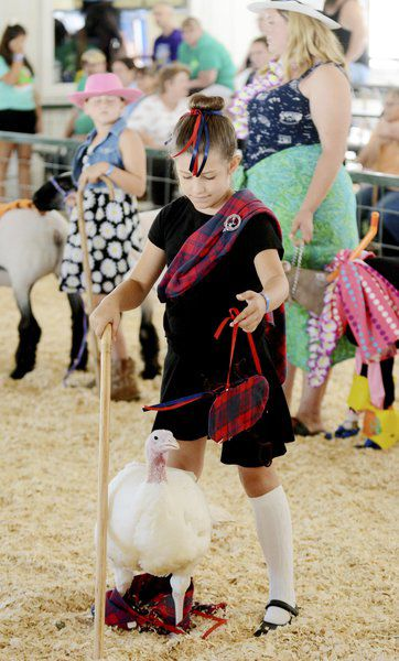 Sunny weather draws visitors to Ashtabula County Fair